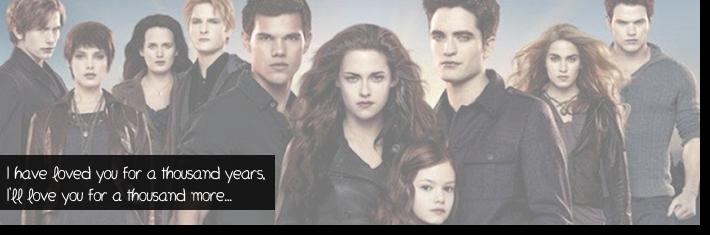 Twilight, do livro ao filme…