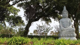 Bacalhôa Buddha Éden
