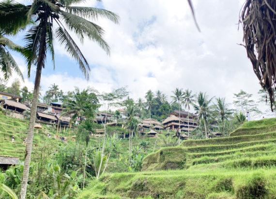 roteiro 10 dias na Indonésia